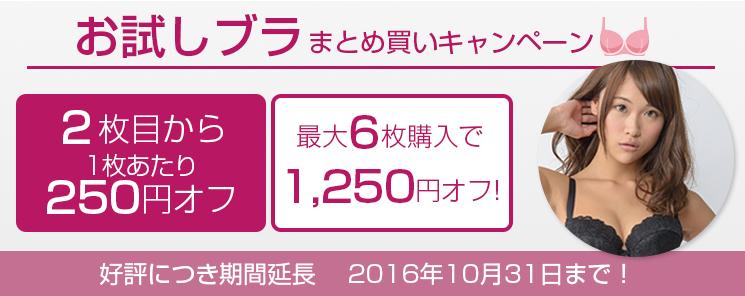 お試しブラVer2.5まとめ買いキャンペーン