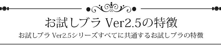 お試しブラVer2.5の特徴