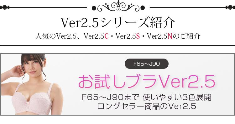 お試しブラVer2.5 F65〜J90