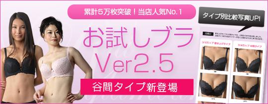 �������u��Ver2.5